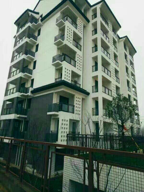 汤山鎏园住宅,位置绝佳,沪宁高速,轻轨直达