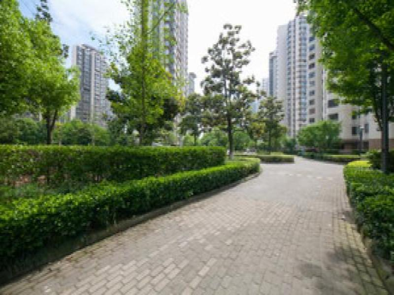 绿城玉兰花园精装修朝南花园50平米