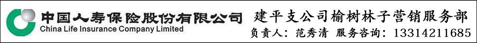 中国人寿--范秀清