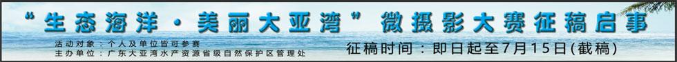"""""""生态海洋・美丽大亚湾""""微摄影大赛征稿开始!"""
