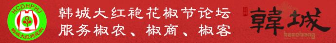 韩城大红袍花椒论坛