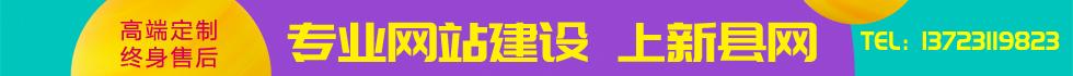 新县专业网站建设  上新县网