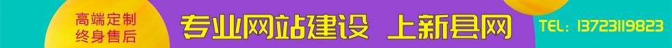 新县网网站建设