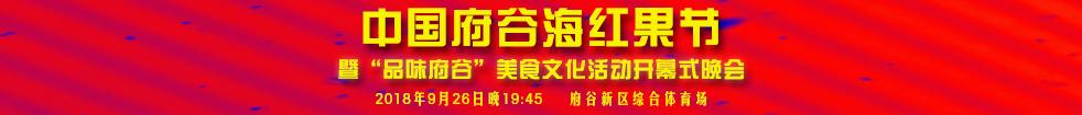 2018中国・府谷海红果节