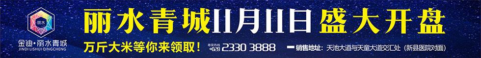 金迪.丽水青城,11.11盛大开盘,万斤大米等你领!