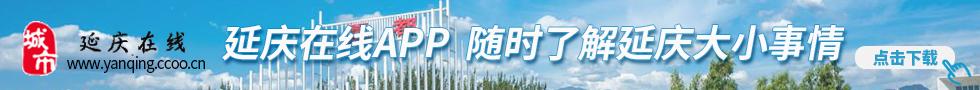 延庆在线app