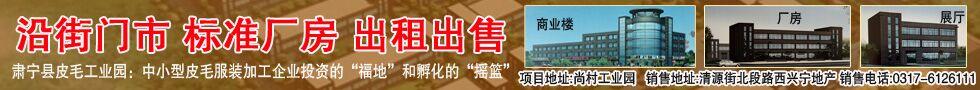 肃宁县皮毛园区标准厂房正式开盘