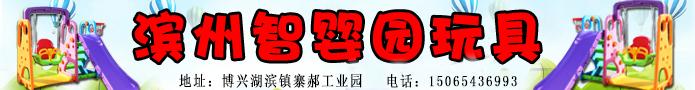 滨州智婴园儿童玩具有限公司