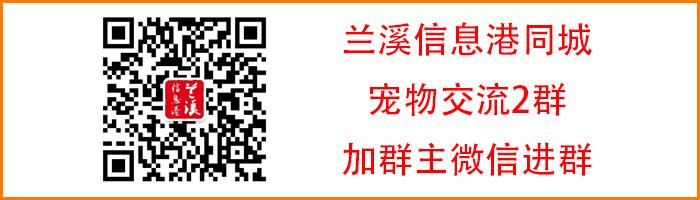 皇冠足球hg7088|免费注册168微盟