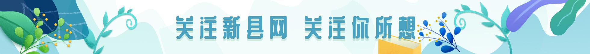 新县网微信宣传