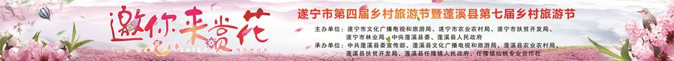 蓬溪县第七届乡村旅游节