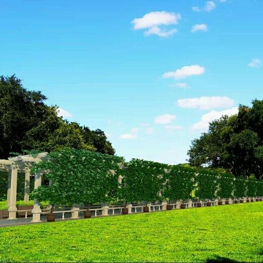安徽桐城欧艺园林景观