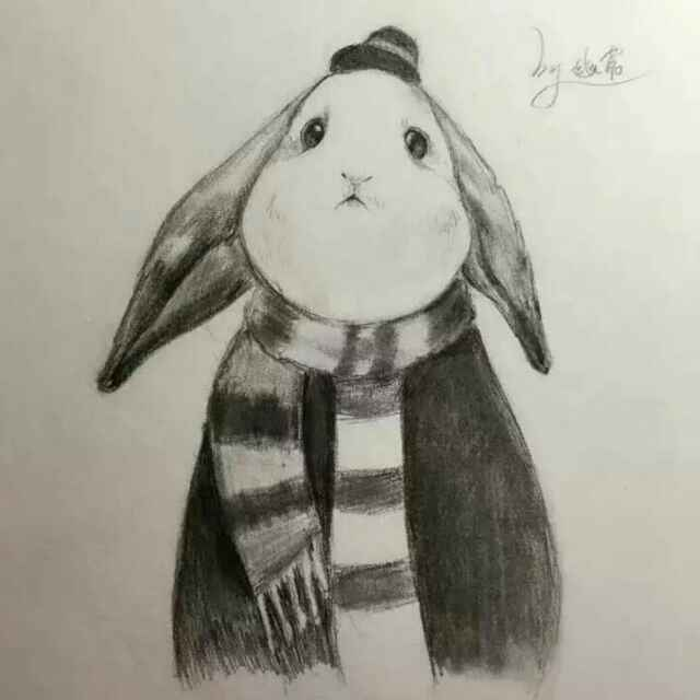 Lucky兔