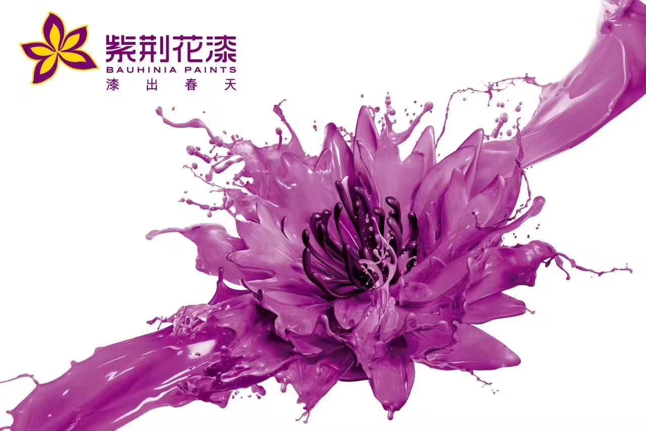 紫荆花漆镇雄旗舰店