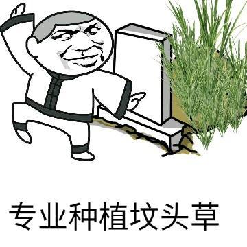 专业种植坟头草