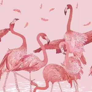 粉红丹顶鹤