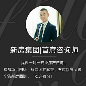 新房集团|首席咨询师