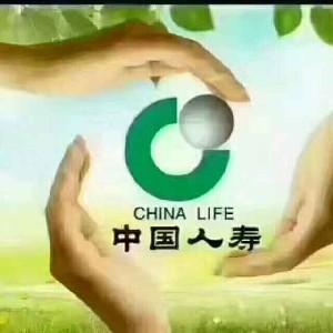 中国人寿欧会容