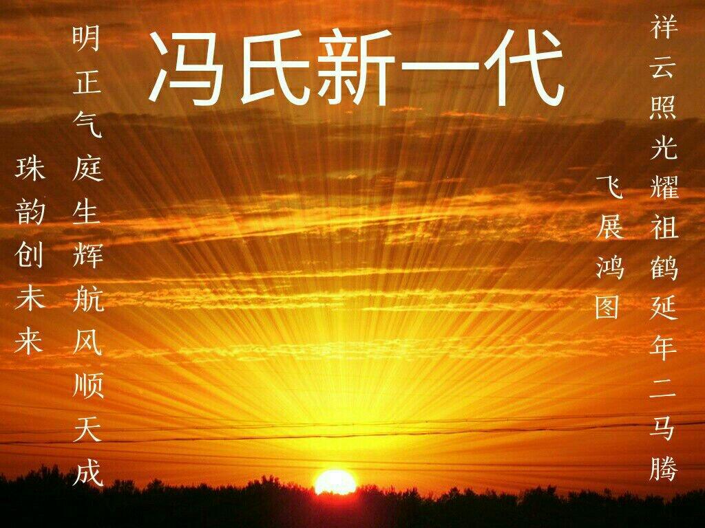 如东冯氏 如东风光无限之千年海堤蓬蓬树