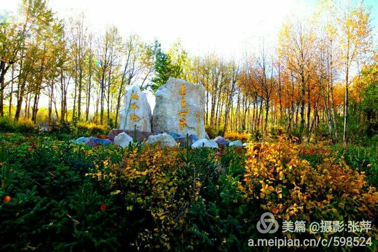 自然大型景观奇石