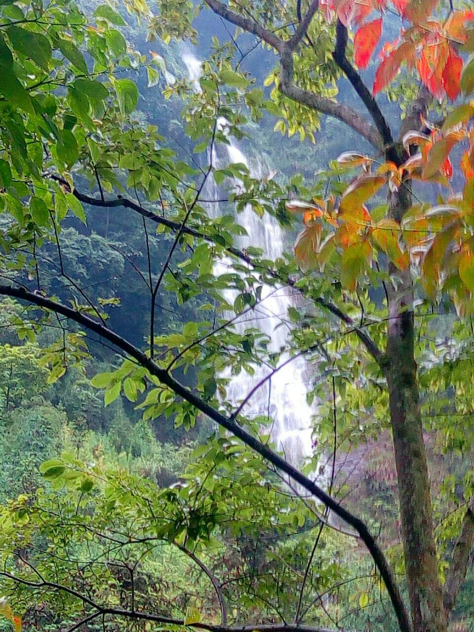 【原创】雨中诞生~~~雨水是瀑布滋养源,它也是视野中的魂,吸引中的赞叹