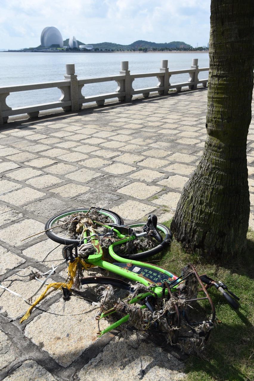 共享单车之痛