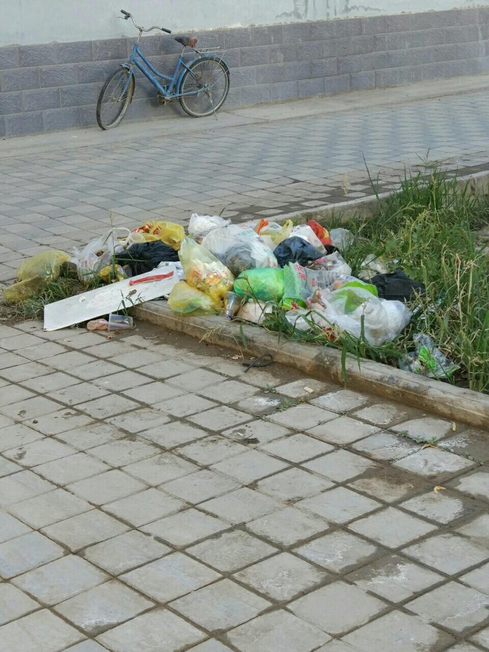 光明园,垃圾不处理