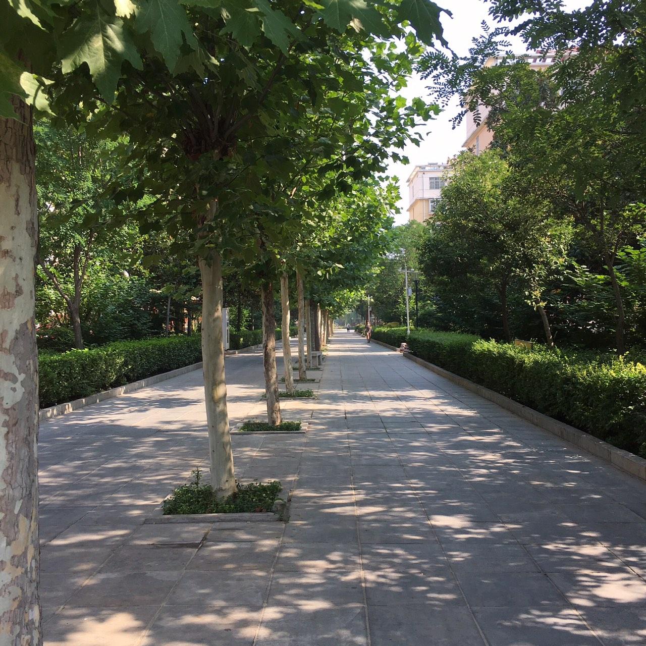燕京花园二期3室2厅1卫64万元