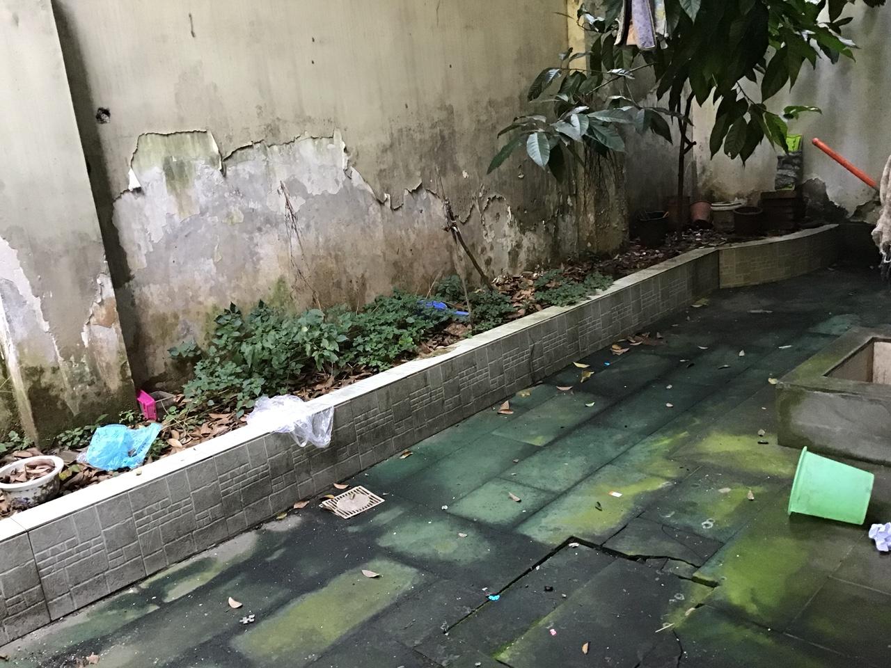 大邑中学附近底楼带天井温馨拎包入住2室 2厅 1卫700元/月