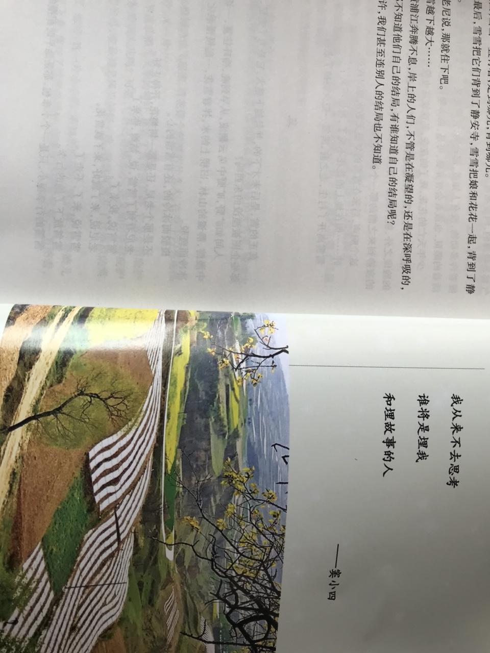 ��家川才女�]娟霞著作《雪落在�R�P的村�f》一��出版�l行