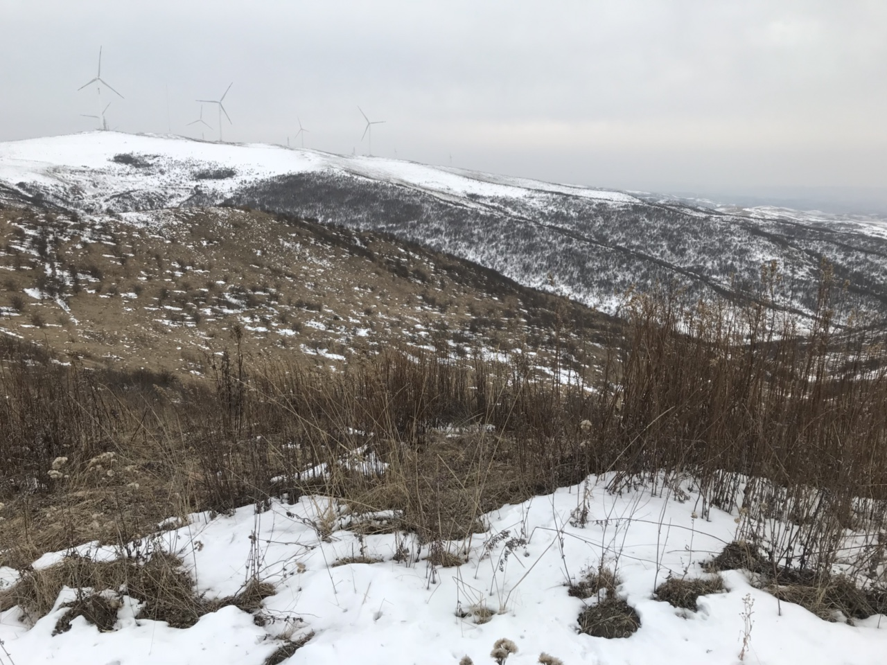 北关山的冬天,美得让人都哭了