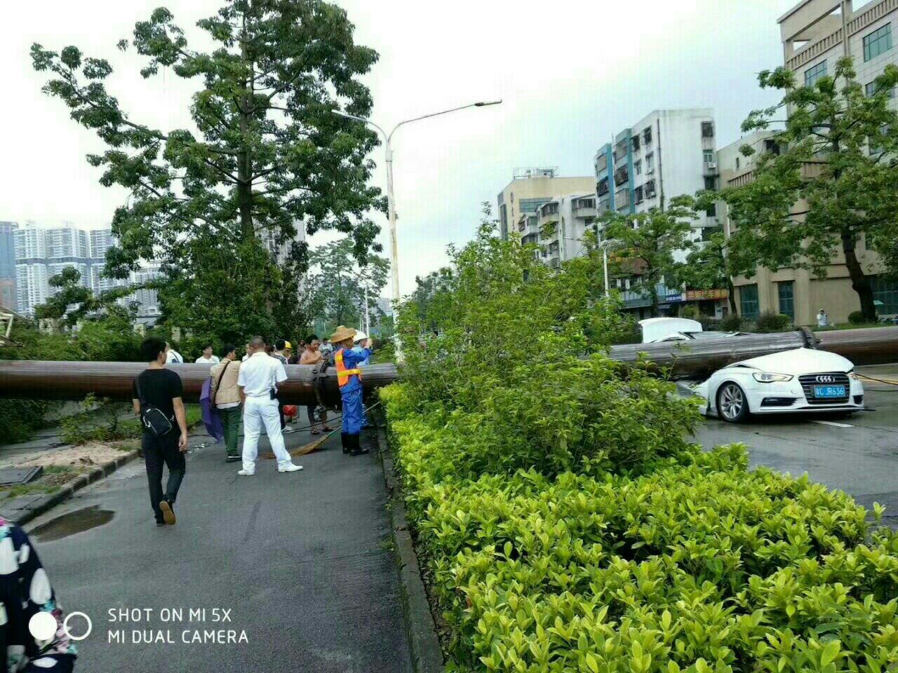 今早珠海市拱北桂花北路轿车被吊车砸中