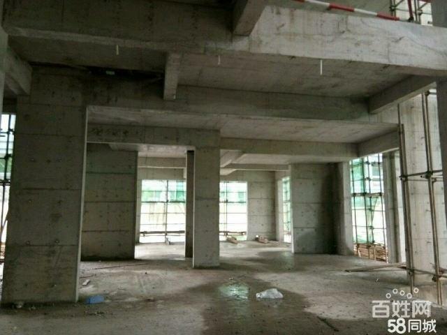 报业大厦2室 1厅 1卫42万元