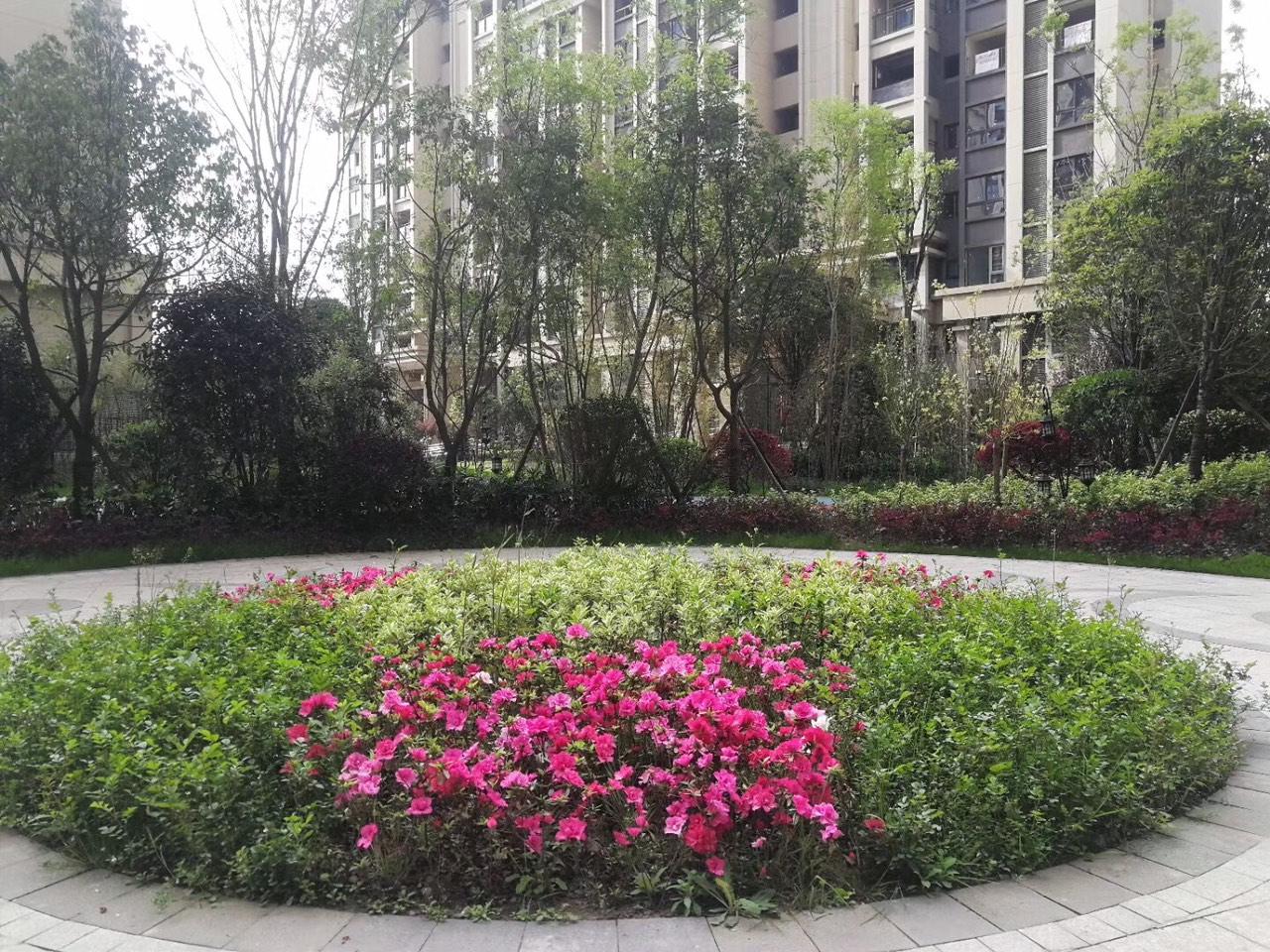 江湾城一期楼王102平米3室2厅2卫1阳台55万