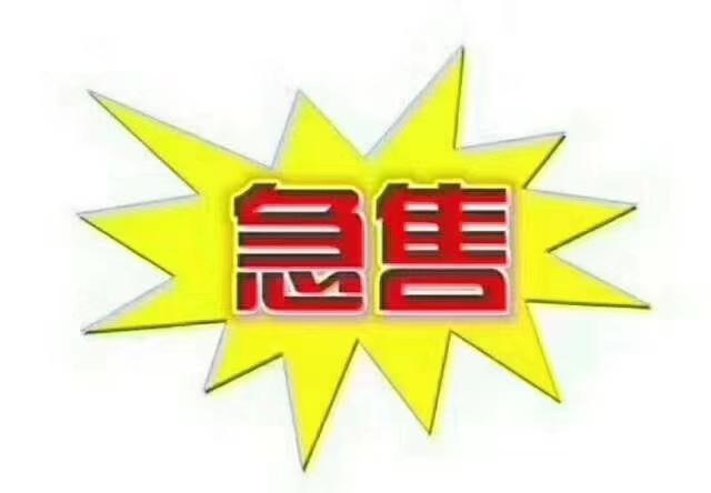 上海城小三室毛坯现房5800/平,全款66万