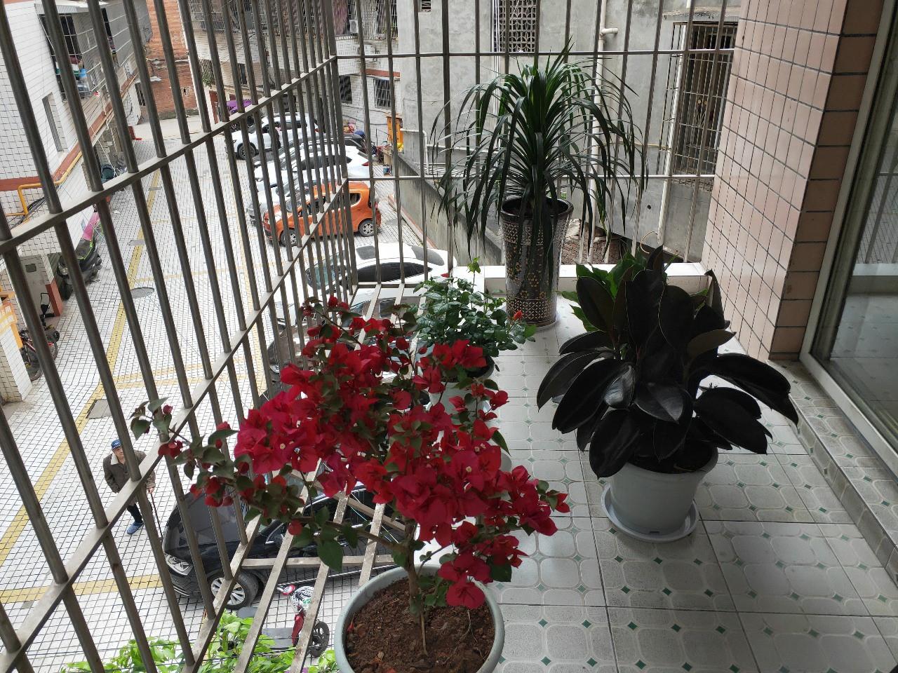 出售陵州铭苑2室2厅1卫47.8万元