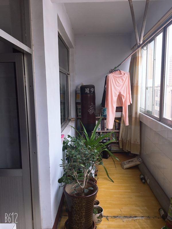 老家具厂3室2厅1卫50万元