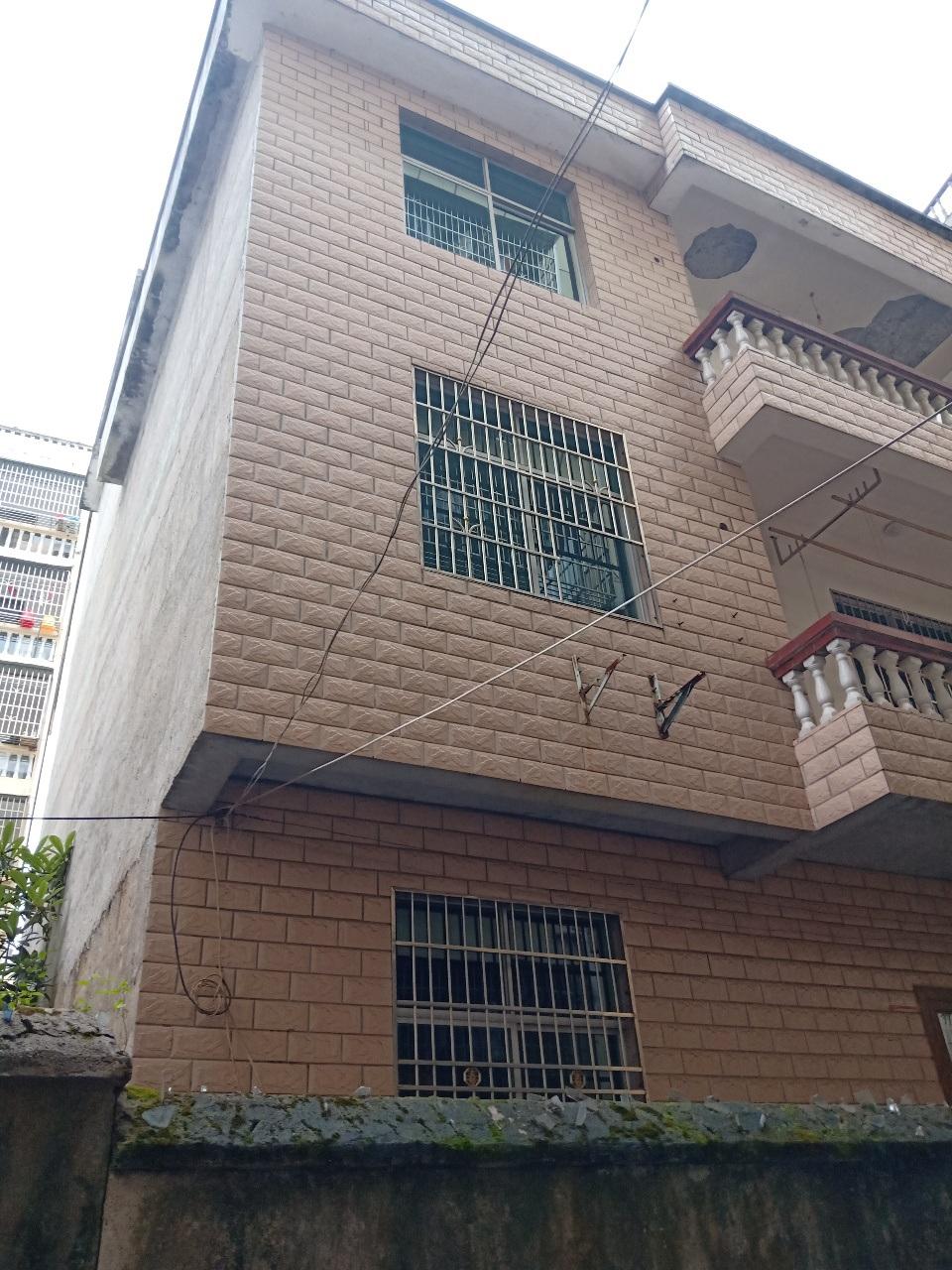 肖家村5室2厅2卫190万元跃进西路肖家村别墅