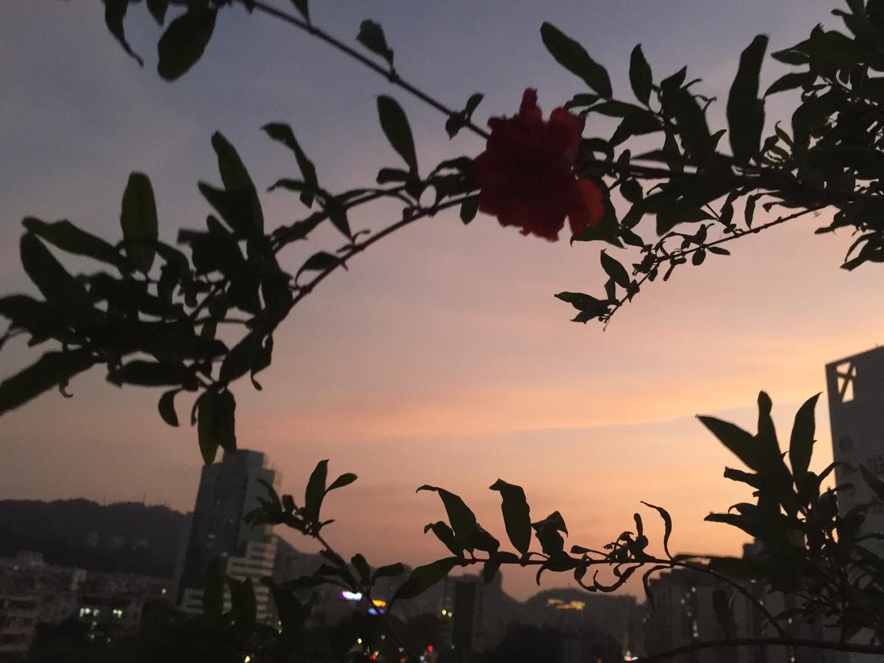 柠溪的晚霞也很美!