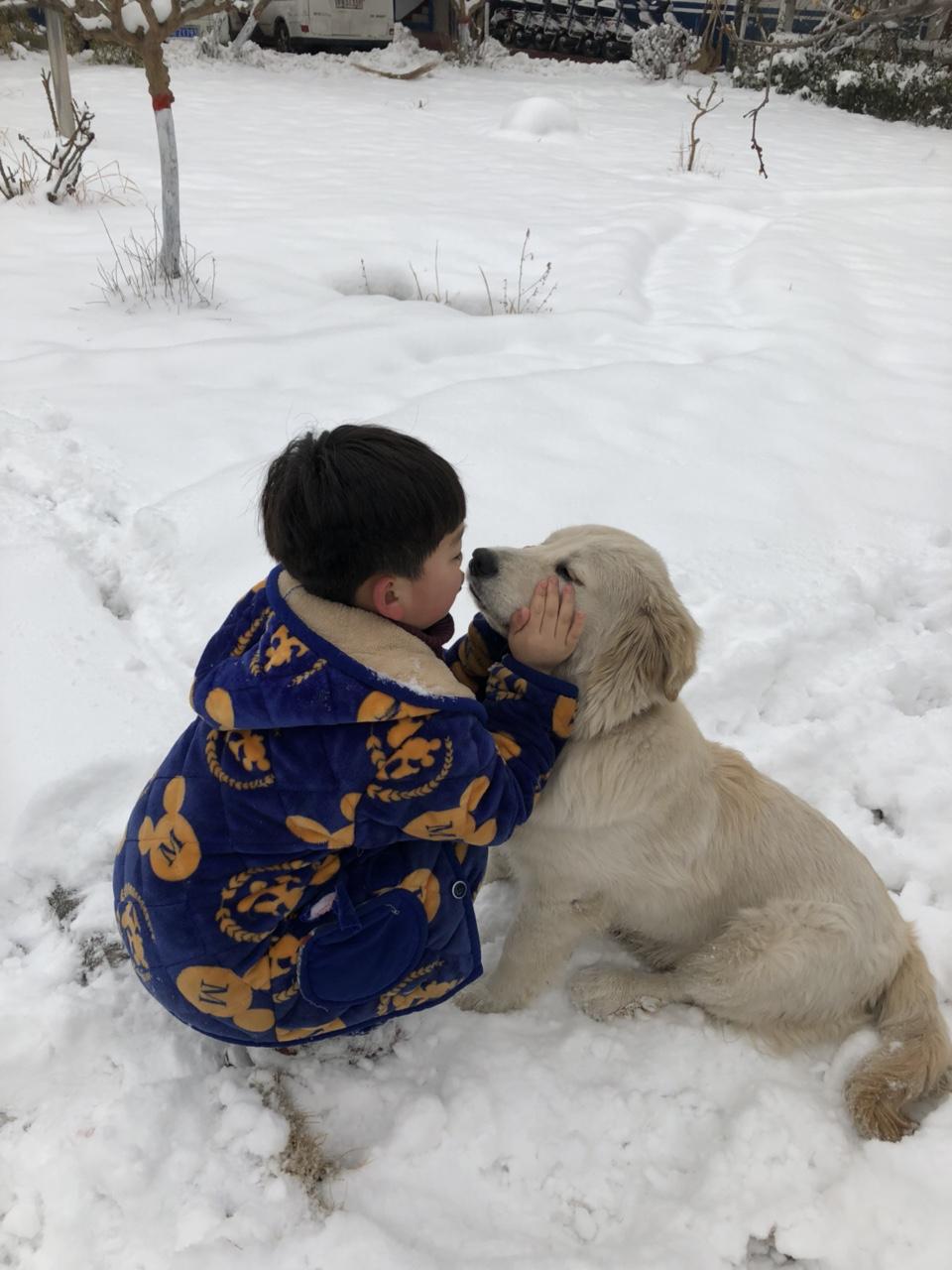 我和狗狗在一起