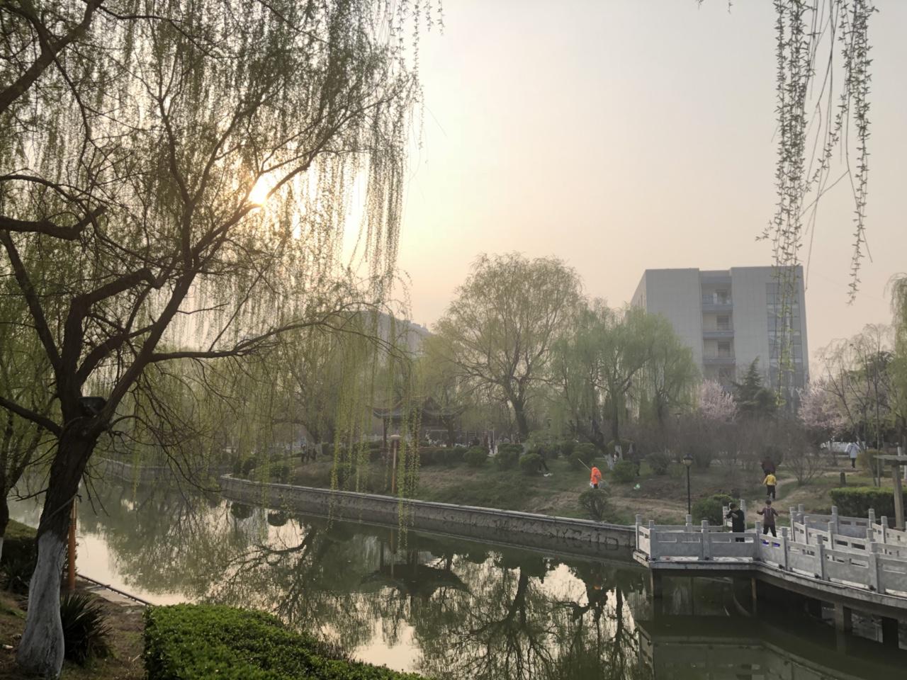 涡阳县紫光公园那一幕