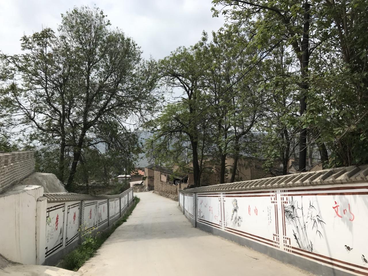 【文化惠民】马关镇西庄村综合文化服务中心风采