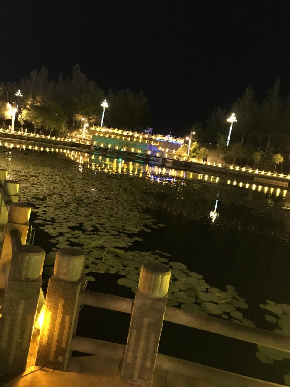 桦南西湖夜景