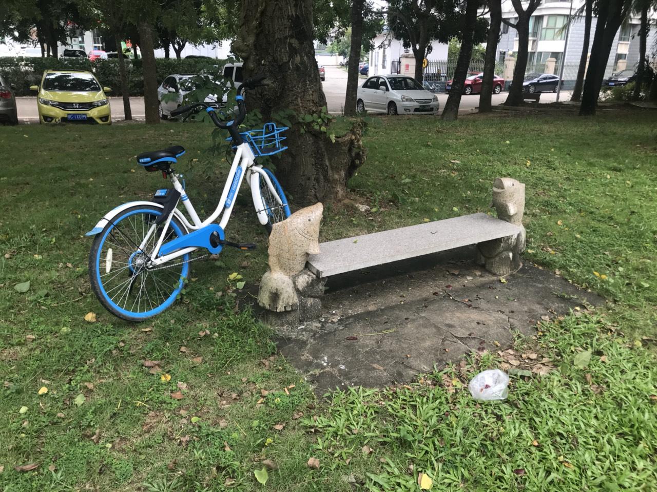 谁把共享单车用完后就这么放大树下了?