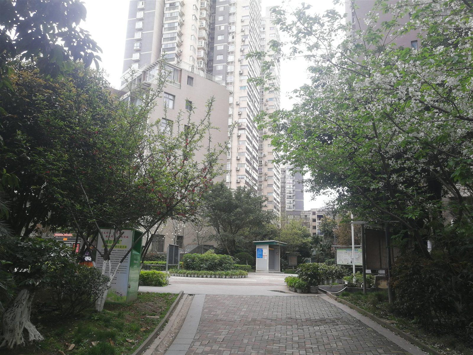 雍景湾小区  3室 2厅 2卫 精装修 可按揭