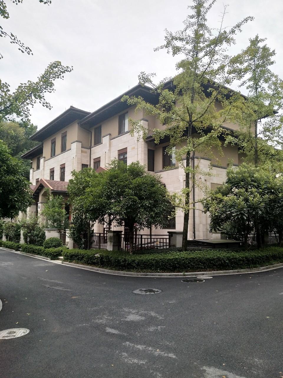 涌金山庄别墅,450平方毛坯,位置佳