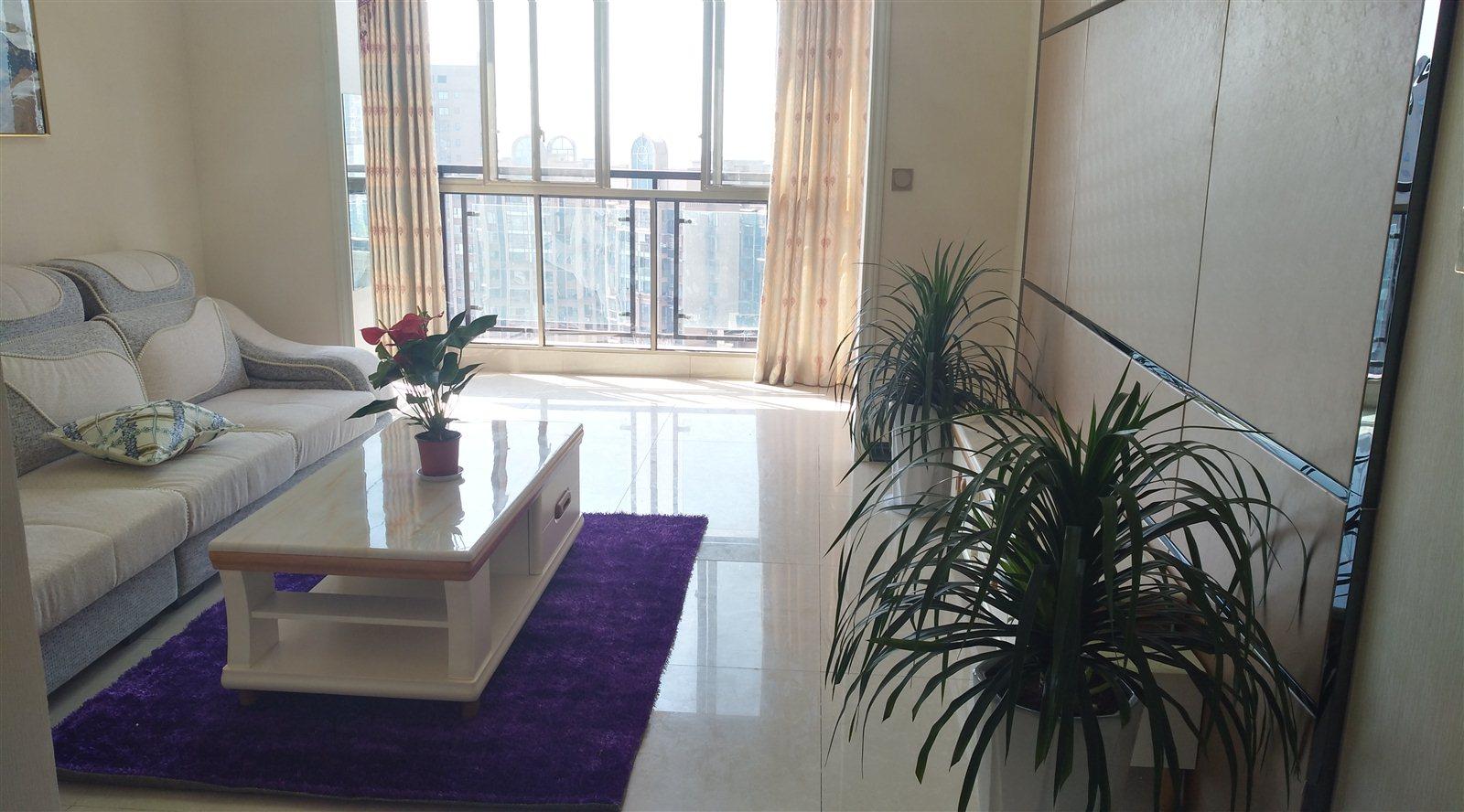 半山华府二期,大套二送大阳台,新房精装58万元