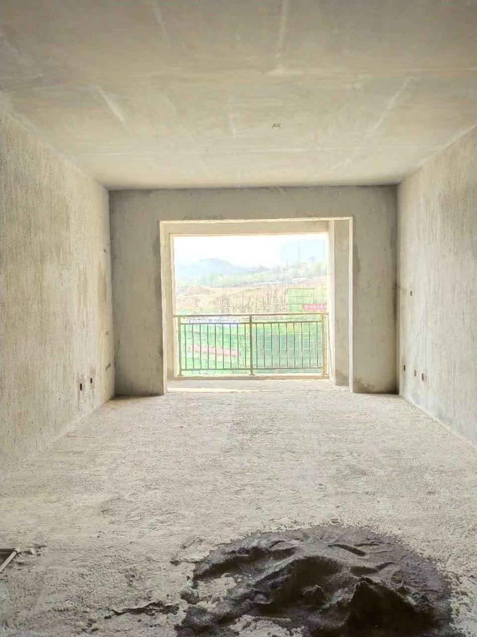 大都会3室 2厅 2卫55万元