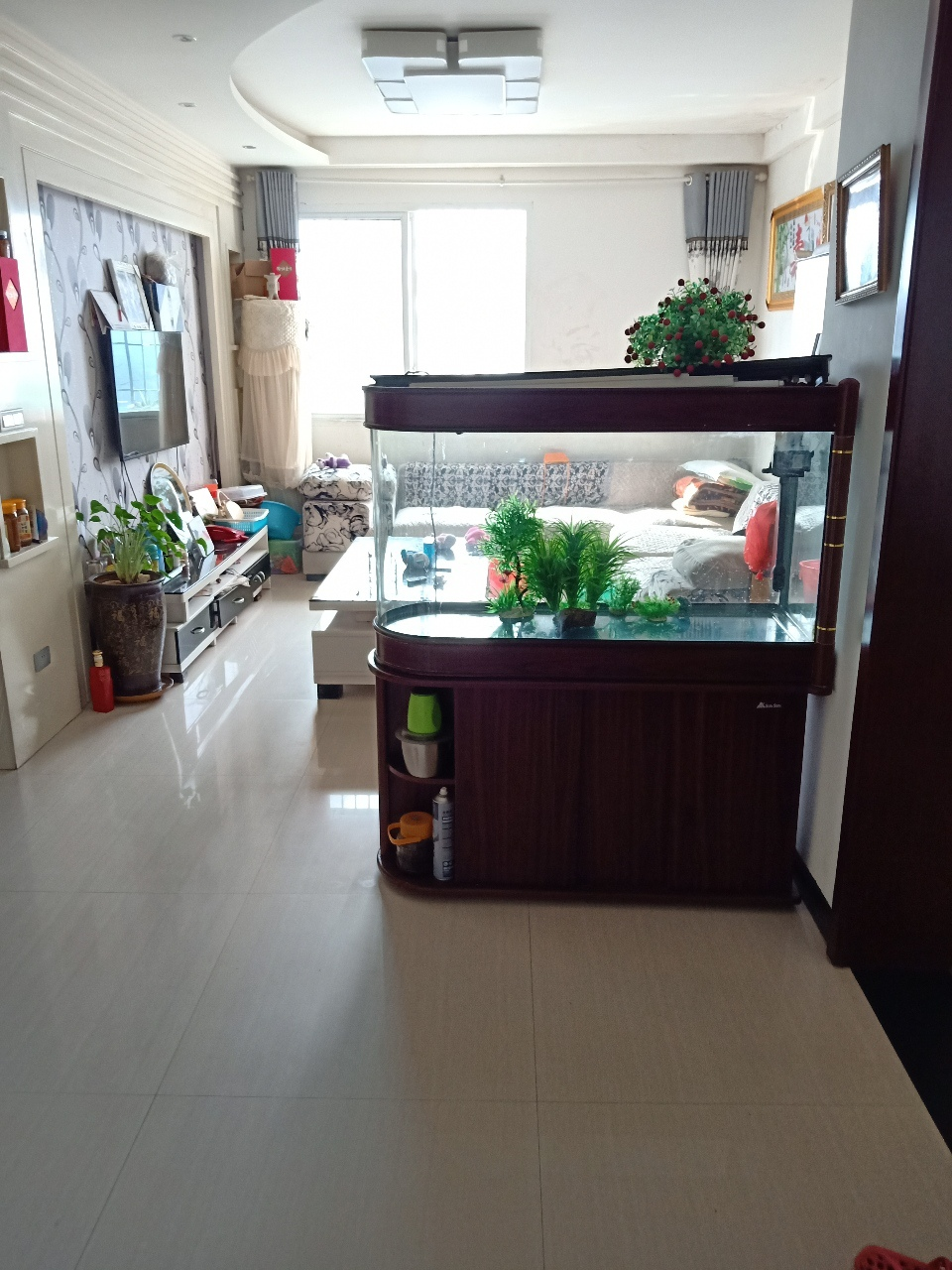 急售江畔明珠2室 2厅 1卫50.6万元