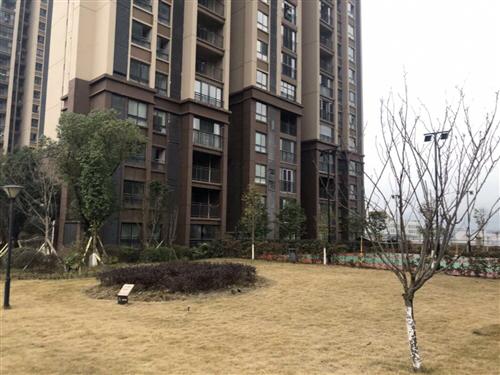 黔龙国际家居建材城2室 1厅 1卫38万元